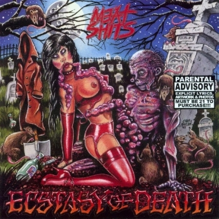 MEAT SHITS (US) - Ecstasy Of Death CD